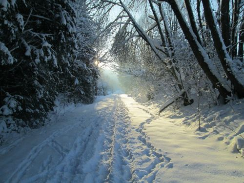 sausis,žiemos kelias,Allgäu žiema