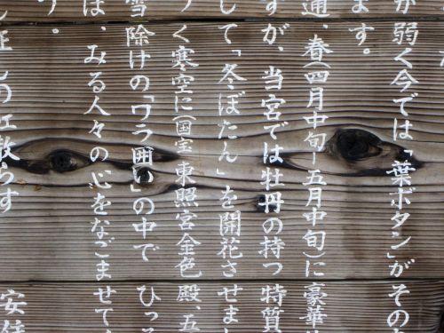 Japonija,japanese,personažai,Kanji,japonų šrifto