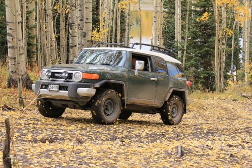 Jeep,4wd,keturi vairuotojai,fj cruiser,kritimas