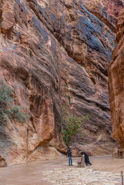 Jordan, Petra, Dykuma, Akmuo, Medis