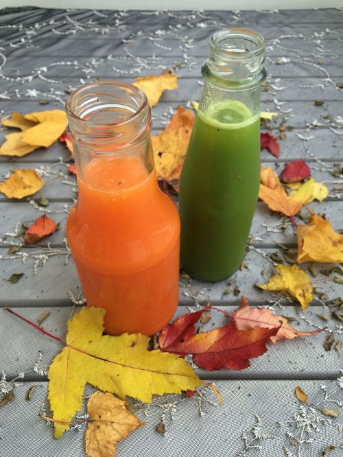 ökologisch,sultys,ruduo,ekologiškas,organinis maistas,sveikas,morkų sultys,organinės sultys,naudinga,sveikata,lapai,gamta,Švedijos,atvejis,autumnalis,detoksikacija,valo,Sultys valo