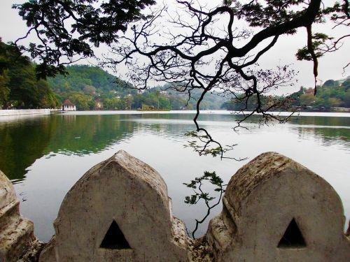 kandy ežeras,medis,ežeras,parkas,Šri Lanka,Mawanella,ceilonas