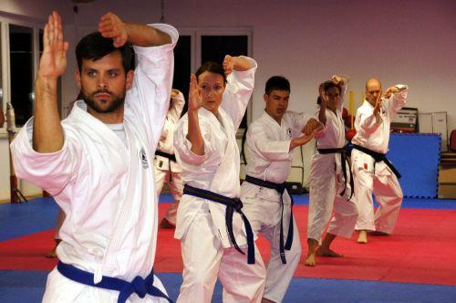 karatė,kovų menai,Sportas,vyrai,laisvalaikis,stiprus,sportiškas,karate mokykla,asija,japanese