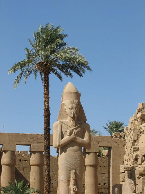 hieroglifai, Egiptas, paminklas, stulpelis, luxor, karnak & nbsp, šventykla, palmių & nbsp, medis, saulė, Karnako šventykla, luxor