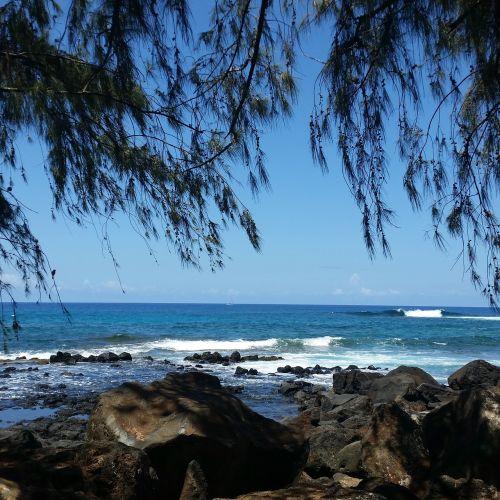 kauai gyvenimas,Hawaii gyvenimas,Hawaii gyvena,papludimys,Hawaii,kauai,kelionė,jūra,vandenynas,atogrąžų