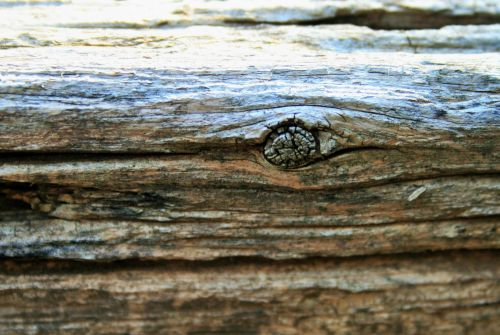 lenta, mediena, grūdai, mazgas, tekstūruotos, ištemptas, mazgas medžio lentoje