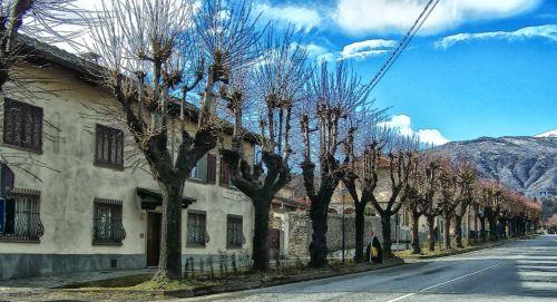 ilgas & nbsp, gatvė, alėja, medžiai, plikas, žiema, kritimas, kalvos, ilgas kelias