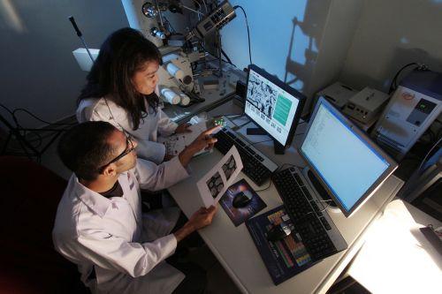 laboratorija,laboratorija,tyrimai,mokslinis,mokslas,technologija,biotechnologija,profesionalus,mikrobiologija