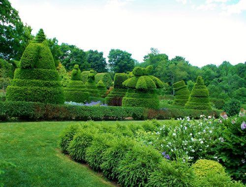 Ladew topiary sodai,Maryland,storas,sodai