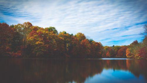 ežeras,medžiai,atspindys,ruduo,kritimas,dangus,vaizdingas,ramus,peizažas,aplinka,gamta,kraštovaizdis,ramus,ramus