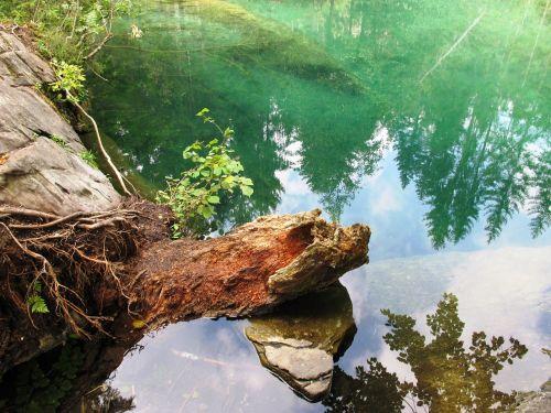 ežeras,gamta,mediena,nuotaika,cresta ežeras,idiliškas,veidrodis,natūralus ežeras,vanduo,eglės
