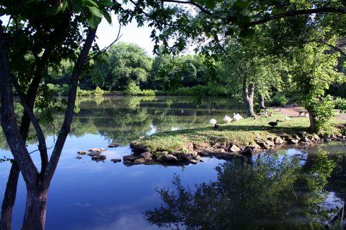 ežeras,ramus,taika,gamta,kraštovaizdis,vanduo,atspindys,ramus,vaizdingas,taikus,lauke,idiliškas,ramus,vasara