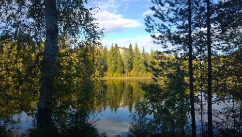 ežeras,miškas,ramus,ramus,kraštovaizdis,dangus,ramus,ruduo,lauke,natūralus,kritimas,vaizdingas