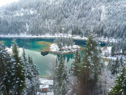 Ežeras Mylėjo Užšaldytą, Mėlynas Ežeras Su Sniego, Ežeras Su Sniego, Ežeras, Sniegas, Žiema, Nevada, Nevado, Turizmas, Kalnas, Gamta, Ledas, Šaltas, Pinheiro, Pušis Su Sniego