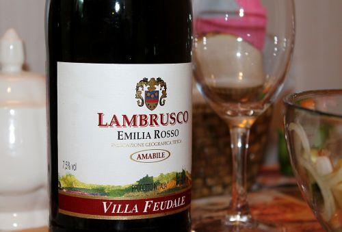 lambrusco,vynas,putojantis,putojantis vynas,raudonas vynas,raudonasis putojantis vynas,putojantis raudonasis vynas,gėrimai,alkoholis,alkoholiniai gėrimai,vakarienė,stalinis,butelis,Iš arti,makro,tyrimo objektas