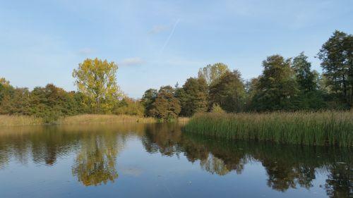 kraštovaizdis,ruduo,ežeras,gamta,vanduo,spalvinga,aukso ruduo