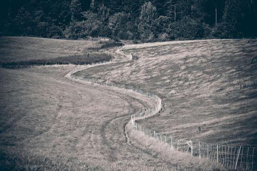 kraštovaizdis,laukas,gamta,laukai,ariamasis,pieva,regėjimas,vasara,platus,toli,kalnas,nuotaika,tvora,žaizdos,toli,kelias,juoda balta,juoda ir balta,medžiai,juoda ir balta nuotrauka,juodos ir baltos sepijos