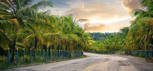 kraštovaizdis, kelionė, nuotrauka, lauko, vasara, pobūdį, Nuotykių, kelionė, kelionė, dangus, saulėlydžio, laisvė
