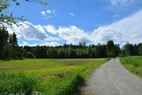 kraštovaizdis, pobūdį, debesys, lauke, Iš pobūdį, dangus, vaizdingas, miškas, idiliškas, žalias