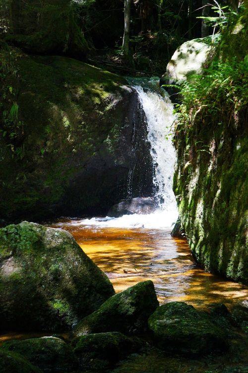 kraštovaizdis,gamta,Clam