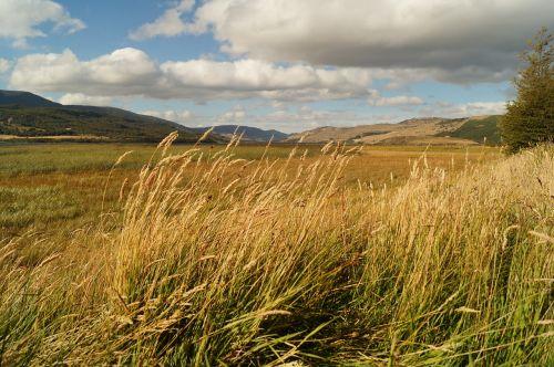 kraštovaizdis,patagonia,Chilean patagonia,gamta