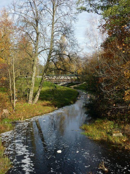 latvia,gamta,lauke,medžiai,srautas,upelis,vanduo,apmąstymai,kritimas,ruduo,Šalis,kaimas,spalvinga,lapija