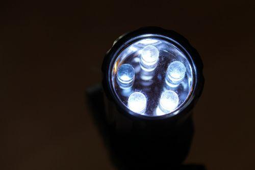 vadovavo,lempa,lemputė