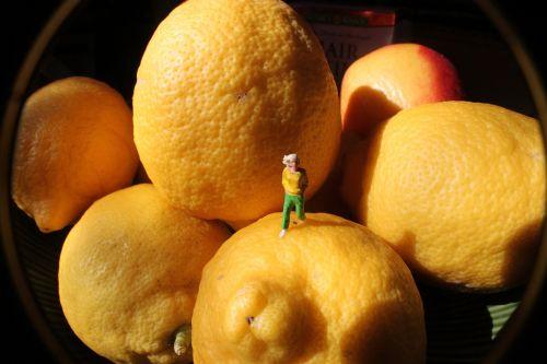 citrina,asmuo,abstraktus,vaisiai,žmonės