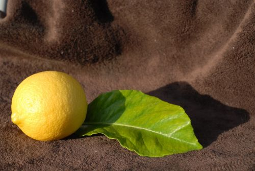 citrina,geltona,citrusiniai,vaisiai
