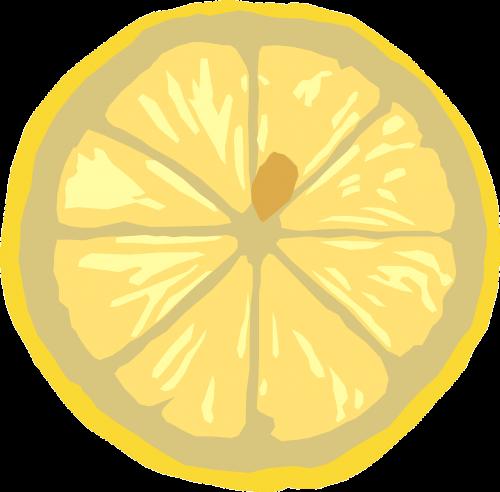 citrina,maistas,vaisiai,geltona,spalva,spalva,skerspjūvis,nemokama vektorinė grafika