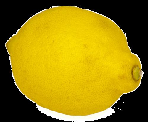 citrina,izoliuotas,vaisiai,geltona,rūgštus,Citrusiniai vaisiai,medis,mityba,vitaminai,maistas,atsipalaidavimas,virėjas,karambola,ūkininkų vietos rinka