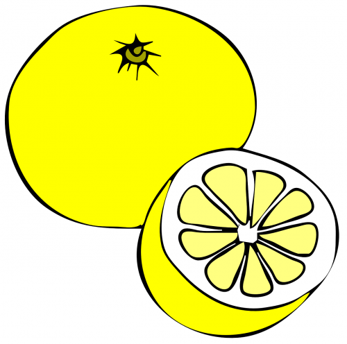 citrina,greipfrutas,vaisiai,geltona,balta,sultingas,citrusiniai,šviežias,sveikas,maistas,vegetariškas,mityba,vitaminas,pusė,gabaliukas,rūgštus,gaivus,nemokama vektorinė grafika