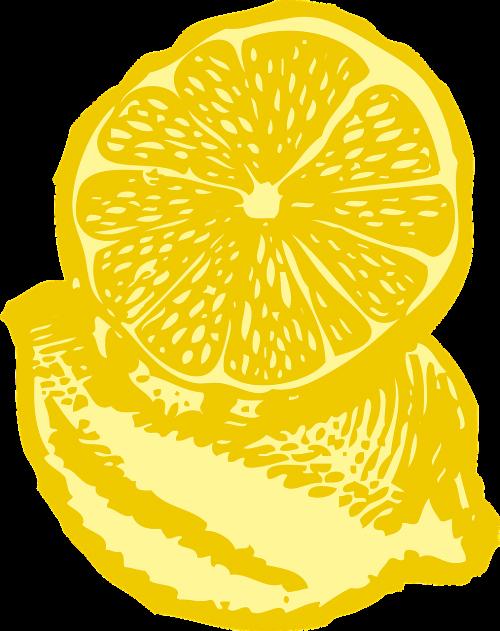 citrina,geltona,gabaliukas,porcija,augalas,vaisiai,rūgštus,šviežias,sultingas,prinokę,rūgštus,pucker,derlius,tekstūra,vitaminas,žaliavinis,natūralus,skyrius,minkštimas,sėklos,oda,žievelės,medis,limonadas,nemokama vektorinė grafika