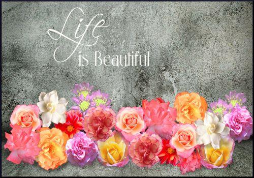 gyvenimas,gražus,retro,siena,menas,jausmas,gėlė,koliažas,gamta,gyvenimo būdas,laimė,laimingas gyvenimas,laimingas,natūralus,pavasaris