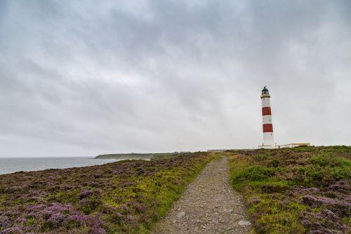 akmenys, vaizdas, švyturys, Škotija, papludimys, Wilkhaven, jūra, kranto, pajūryje, raudona, smėlis, uolos, šiaurė & nbsp, jūra, rytas, Naudoti & nbsp, ness, Naudoti & nbsp, ness & nbsp, švyturį, kraštovaizdis, švyturys
