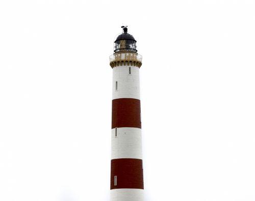 akmenys, vaizdas, švyturys, Škotija, papludimys, Wilkhaven, jūra, kranto, pajūryje, raudona, smėlis, uolos, šiaurė & nbsp, jūra, rytas, Naudoti & nbsp, ness, Naudoti & nbsp, ness & nbsp, švyturį, kraštovaizdis, baltos švyturys