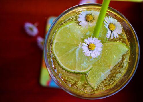 kalkės,erfrischungsgetränk,detoksikacija,mineralinis vanduo,atsipalaidavimas,gerti,stiklas,Daisy,vasaros gėrimas,troškulys