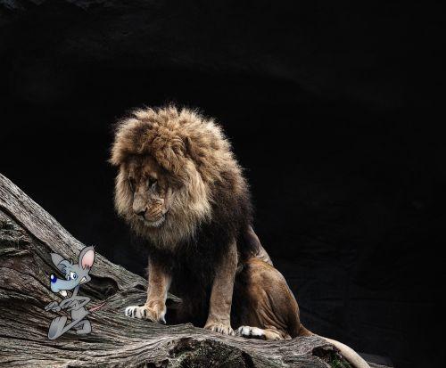 liūtas,pelė,komponavimas,sirrealis