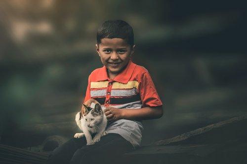 Berniukas Su Kačių,  Katė,  Gyvūnas,  Mielas Berniukas Su Gyvūno,  Katė Su Berniuku,  Berniukas