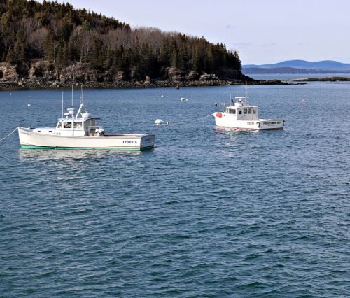 valtis, valtys, žvejybos & nbsp, valtys, omarai & nbsp, valtys, lobstering, omarai & nbsp, žvejai, sala, salos, jūra, vandenynas, uostas, įlanka, kranto, pakrantė, nauja & nbsp, Anglija, laivai, lobstermen, omarų valtys