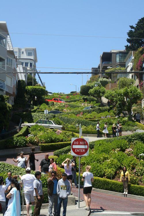 Lombard gatvė,gatvė,San Franciskas,Kalifornija,žinomas,kietas,juostos spygliai,posūkis,kreivas,rytų-vakarų gatvė