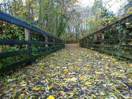 ilgas kelias,ateitis,kelias,kelias,kryptis,kelionė,maršrutas,gamta,tiesus