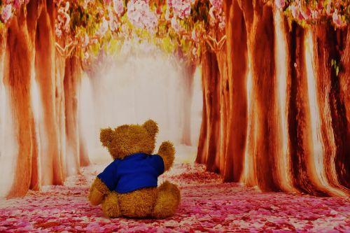 ilgesys,praleisti,Teddy,mielas,minkštas žaislas,miškas,medžiai,gėlės,saldus