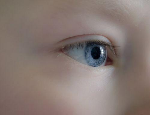 akis, žmonės, berniukas, vaikai, makro, fonas, mėlynas, ragenos, vaizdas, atrodo, atrodo