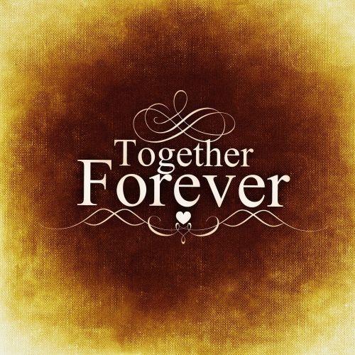 meilė,pora,mėgėjai,kartu,Draugystė,atvirukas,derina