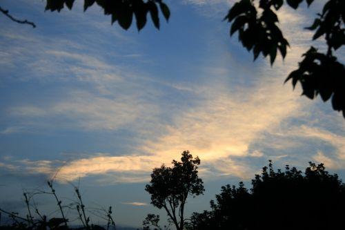 saulėlydis, debesys, šviesus, šviesa, šviesus, dangus, vakaras, lapija, šviesus debesies pleištas