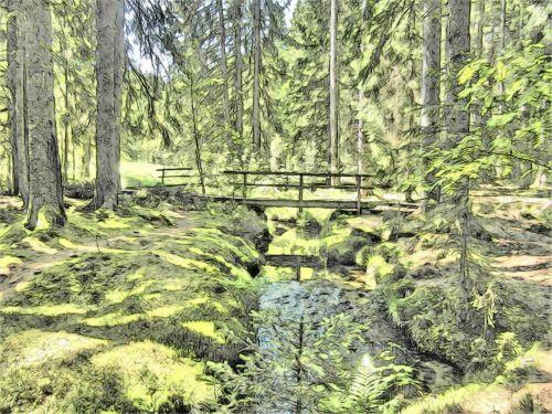magiškas miškas,pasakų miškas,tiltas,Juodasis miškas,piešimas,sveikata,upelis,svajonė,magija