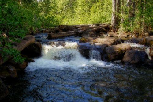 mahood upė,upė,vanduo,miškas,gamta,Britų Kolumbija,Kanada