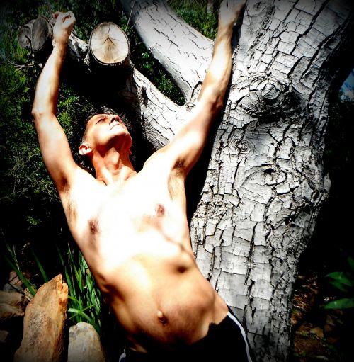 Patinas, kūnas, lankstymas, kultūrizmas, krūtinė, pečiai, kelia, topless, medis, lauke, saulė, liemuo, vyro modelis kelia