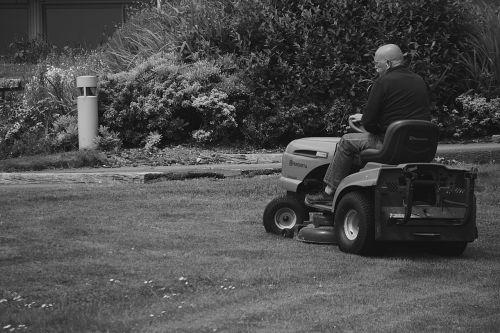 vyras,velėna,juoda ir balta,žoliapjovė,pjovimas,darbas,darbuotojas,sodas